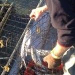 Fishing Methods Profile
